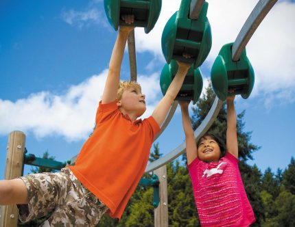 ziplines for playgrounds