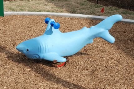 shark spring playground