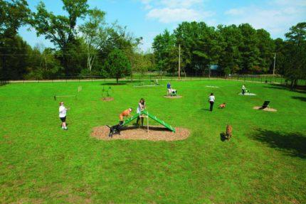 fenced-in-dog-park-simulation